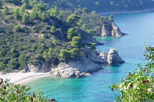 rent a car Sithonia Halkidiki